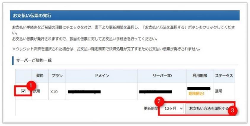エックスサーバーの支払い画面